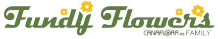 footer logo